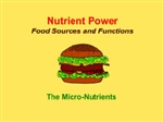 Nutrient Power--Micro Nutrients Whiteboard Lesson
